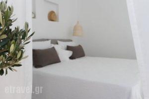 Alia_travel_packages_in_Cyclades Islands_Naxos_Naxos chora