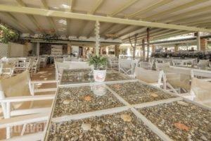 Dafni Villas & Maisonettes_holidays_in_Villa_Ionian Islands_Zakinthos_Zakinthos Chora