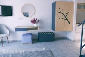 Issalos Studios_best prices_in_Hotel_Aegean Islands_Thasos_Thasos Chora
