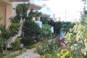 Golden Rose Suites_best prices_in_Hotel_Crete_Chania_Kolympari