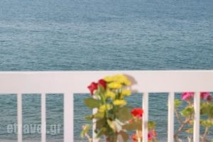 Marilyn Apartments_best prices_in_Apartment_Crete_Rethymnon_Rethymnon City