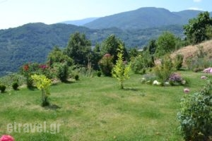 Guesthouse Kapaniaris_best prices_in_Hotel_Thessaly_Magnesia_Portaria