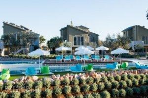 Lavender Cove_best prices_in_Hotel_Peloponesse_Argolida_Archea (Palea) Epidavros