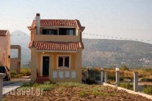 Villa Beatrice_lowest prices_in_Villa_Aegean Islands_Samos_Potokaki