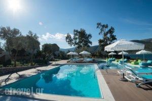Lavender Cove_lowest prices_in_Hotel_Peloponesse_Argolida_Archea (Palea) Epidavros