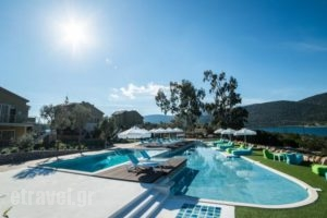 Lavender Cove_best deals_Hotel_Peloponesse_Argolida_Archea (Palea) Epidavros