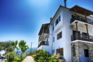 Guesthouse Enastron_holidays_in_Hotel_Thessaly_Magnesia_Zagora