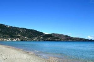 Issalos Studios_holidays_in_Hotel_Aegean Islands_Thasos_Thasos Chora