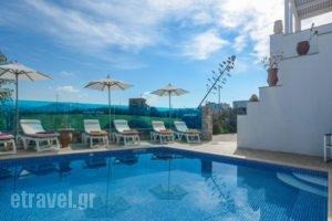 Sofia Studios_best prices_in_Hotel_Cyclades Islands_Naxos_Naxos chora
