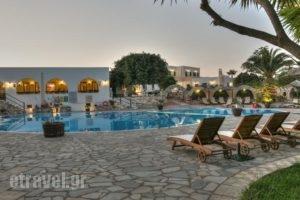 Asteras Paradise_holidays_in_Hotel_Cyclades Islands_Paros_Paros Chora