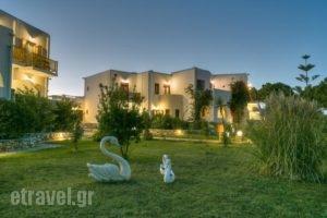 Asteras Paradise_best prices_in_Hotel_Cyclades Islands_Paros_Paros Chora