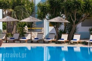 Asteras Paradise_lowest prices_in_Hotel_Cyclades Islands_Paros_Paros Chora