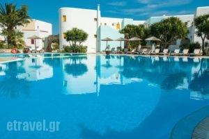 Asteras Paradise_accommodation_in_Hotel_Cyclades Islands_Paros_Paros Chora