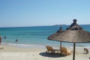 Glaronissi 1_holidays_in_Hotel_Cyclades Islands_Naxos_Naxos chora