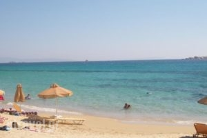 Glaronissi 1_best deals_Hotel_Cyclades Islands_Naxos_Naxos chora