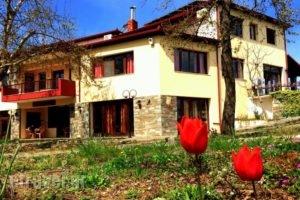 Evridiki_best prices_in_Hotel_Macedonia_Imathia_Vergina