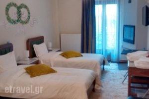 Giasimo_holidays_in_Hotel_Central Greece_Viotia_Arachova