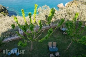 Guesthouse Enastron_best prices_in_Hotel_Thessaly_Magnesia_Zagora