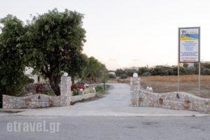 Electra Studios_best prices_in_Hotel_Crete_Chania_Palaeochora