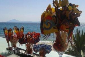 Beach Hotel Kapahi_best deals_Hotel_Aegean Islands_Thasos_Thasos Chora