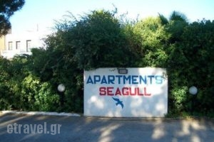 Apartments Seagull_best prices_in_Apartment_Dodekanessos Islands_Kos_Kos Chora