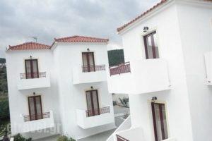 Laza Beach Inn_best deals_Hotel_Piraeus Islands - Trizonia_Agistri_Agistri Chora