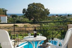 Alkioni_best prices_in_Hotel_Ionian Islands_Kefalonia_Katelios