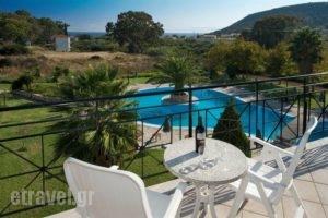 Alkioni_travel_packages_in_Ionian Islands_Kefalonia_Katelios