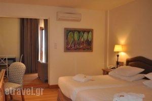 Santa Marina Arachova_holidays_in_Hotel_Central Greece_Viotia_Arachova