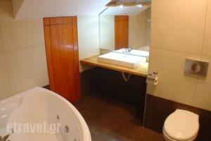 Ariadne_lowest prices_in_Hotel_Central Greece_Viotia_Arachova