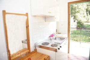 Phivos Studios_travel_packages_in_Ionian Islands_Corfu_Palaeokastritsa