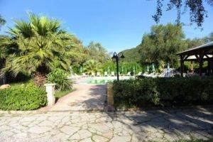 Phivos Studios_best deals_Apartment_Ionian Islands_Corfu_Palaeokastritsa