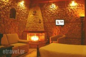 Ariadne_holidays_in_Hotel_Central Greece_Viotia_Arachova