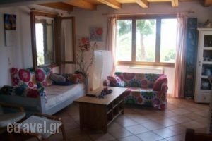 House Rebecca_travel_packages_in_Ionian Islands_Zakinthos_Zakinthos Rest Areas