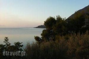Nikiana Club_holidays_in_Apartment_Ionian Islands_Lefkada_Nikiana