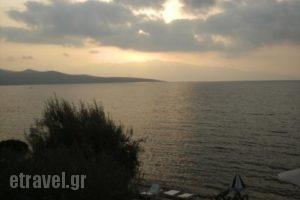 Nikiana Club_best prices_in_Apartment_Ionian Islands_Lefkada_Nikiana