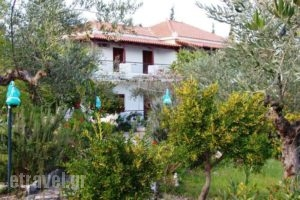 Kombi Beach_lowest prices_in_Hotel_Thessaly_Magnesia_Pilio Area