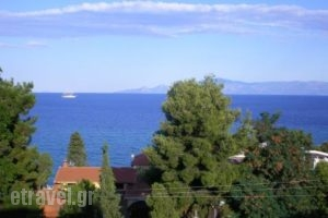 Luca_best prices_in_Apartment_Macedonia_Kavala_Palio