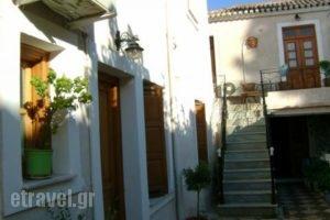 Villa Marina_accommodation_in_Villa_Piraeus Islands - Trizonia_Spetses_Spetses Chora