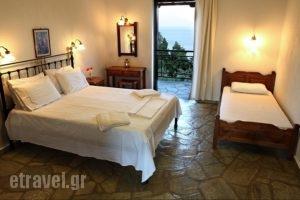 Mando Beachfront_accommodation_in_Hotel_Sporades Islands_Skopelos_Stafylos