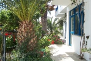 Finikas Studios_lowest prices_in_Apartment_Cyclades Islands_Kithnos_Kithnos Rest Areas