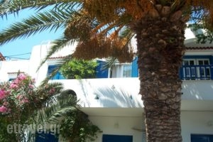 Finikas Studios_travel_packages_in_Cyclades Islands_Kithnos_Kithnos Rest Areas
