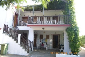 Pansion Platana_holidays_in_Room_Sporades Islands_Skopelos_Glossa