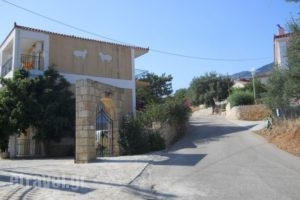 Eleni 3_best prices_in_Apartment_Ionian Islands_Kefalonia_Lourdata