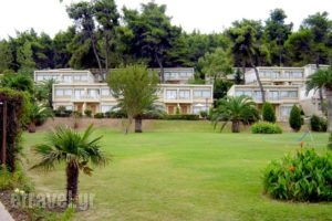 Sani Beach Club_accommodation_in_Hotel_Macedonia_Halkidiki_Sani