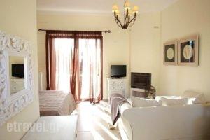 Elaion Mini Suites_travel_packages_in_Peloponesse_Argolida_Nafplio