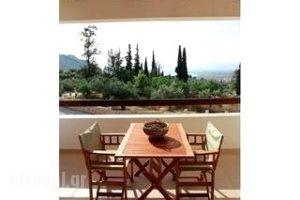 Elaion Mini Suites_best deals_Apartment_Peloponesse_Argolida_Nafplio