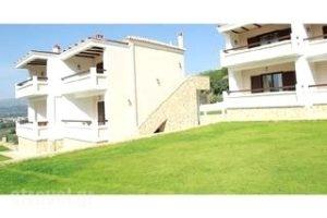 Elaion Mini Suites_best prices_in_Apartment_Peloponesse_Argolida_Nafplio
