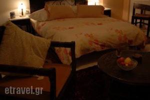 Kynaitha Papastaurou_best deals_Hotel_Peloponesse_Achaia_Kalavryta