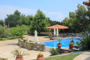 Zeus_travel_packages_in_Macedonia_Pieria_Dion